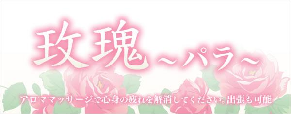 薔薇 ~バラ~