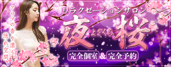 夜桜~よざくら